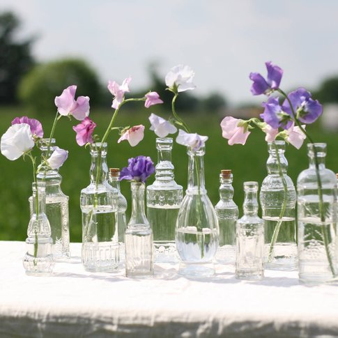 Set Of Six Glass Bottle Vases With Cork Stoppers