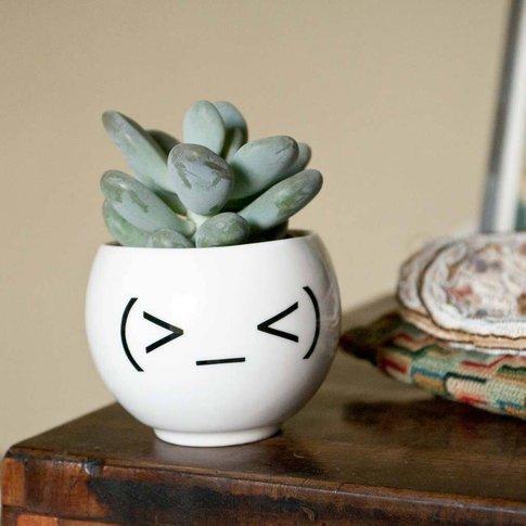 Funny Emoji Planter