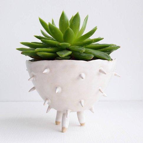 Handmade A White Spiky Cactus Planter Plant Pot