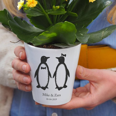 Personalised Penguins Plant Pot