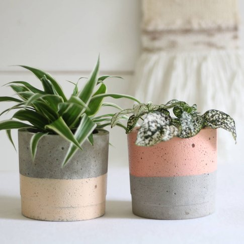Tonal Colour Block Planter