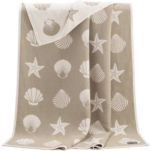Seashells Pure Cotton Blanket