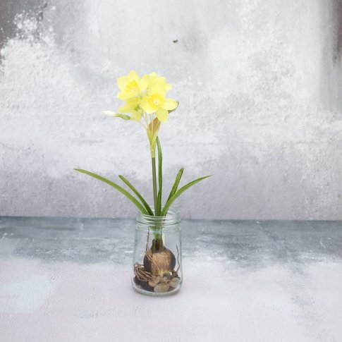Silk Daffodil With Bulb In Glass Vase