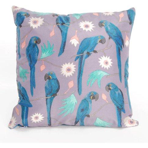 Macaws Cushion