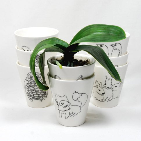 Hand Illustrated Planters