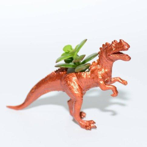 Ceratosaurus Dinosaur Planter With Plant, Red/Copper...