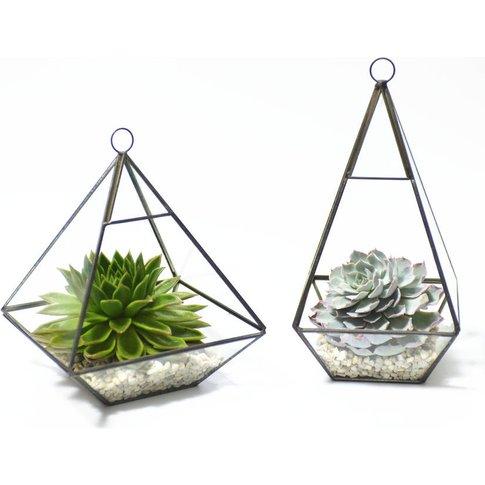 Geometric Pyramid Glass Vase Succulent Terrarium