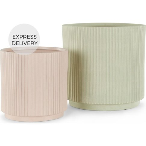 Palm Set Of Two Large Earthenware Planters, Multi