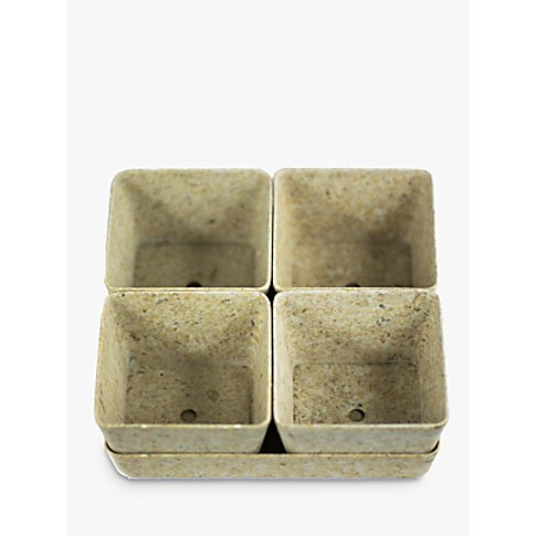 Husk Recyclable Square Tray & Planters, Set Of 4, Chaff