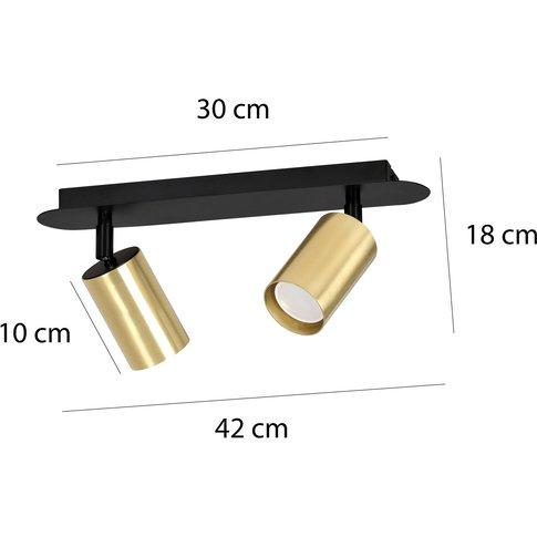 Zen 2 Ceiling Spotlight, Two-Bulb, Black/Gold