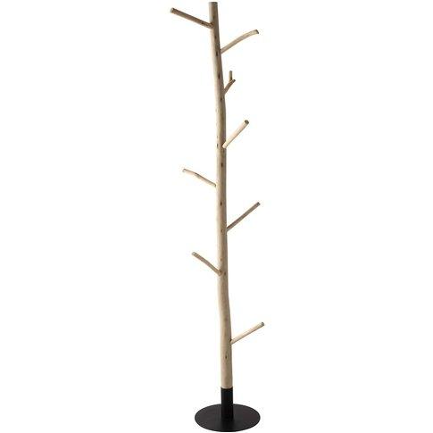 Eucalyptus And Black Metal Tree Trunk Coat Stand