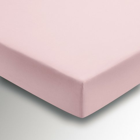 Helena Springfield Percale Single Fitted Sheet, Blush