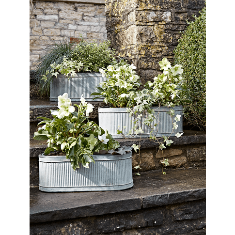 New Three Oval Trough Planters