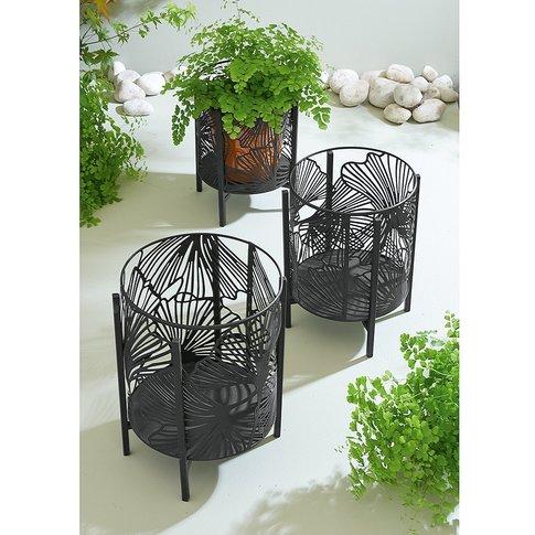 Gingko Plant Pot Holders