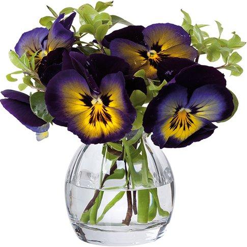 Florabundance Pansy Vase - Slightly Imperfect