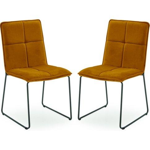 Soren Mustard Velvet Dining Chairs With Black Legs In Pair