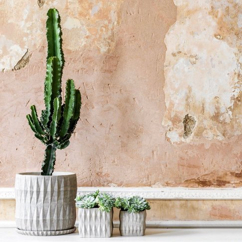 Round Diamond Embossed Plant Pot with Tray