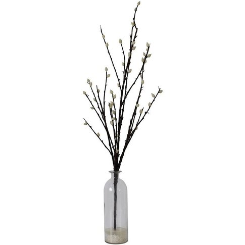 Winter Blossom In Glass Vase