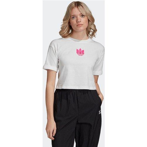 T-shirt court imprimé devant - adidas Originals - Modalova
