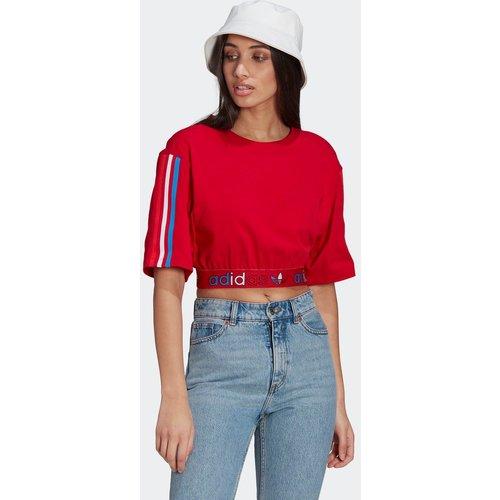 T-shirt Adicolor Primeblue Tricolor Cropped - adidas Originals - Modalova