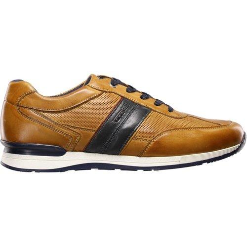 Sneakers en cuir AVIDOR - Salamander - Modalova