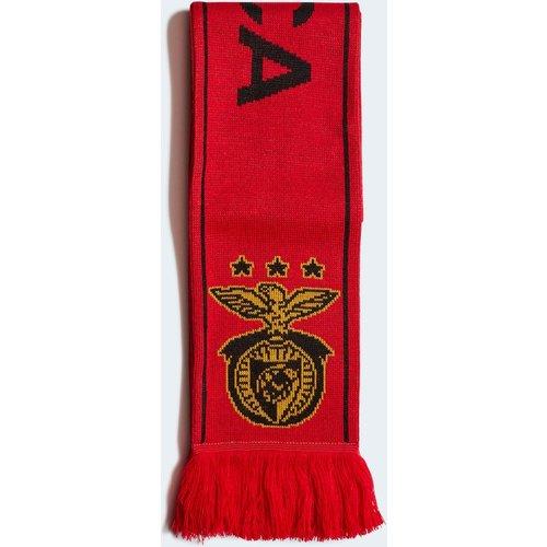 Écharpe Benfica - adidas performance - Modalova
