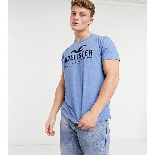 T-shirt à gros logo sur le devant - chiné moyen - Hollister - Modalova