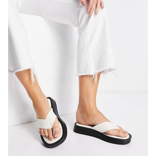 Dornea - Sandales chunky style tong - cassé - Raid Wide Fit - Modalova