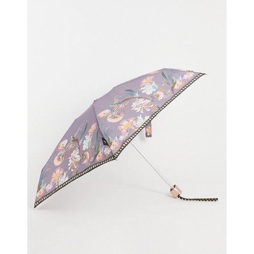 Parapluie - Décadence - Ted Baker - Modalova