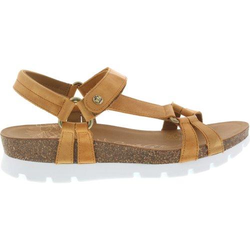 Sally basics sandals Panama Jack - Panama Jack - Modalova