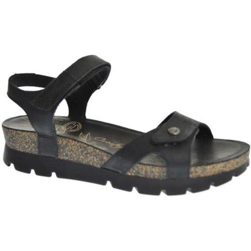 Sandal flat sporty Panama Jack - Panama Jack - Modalova