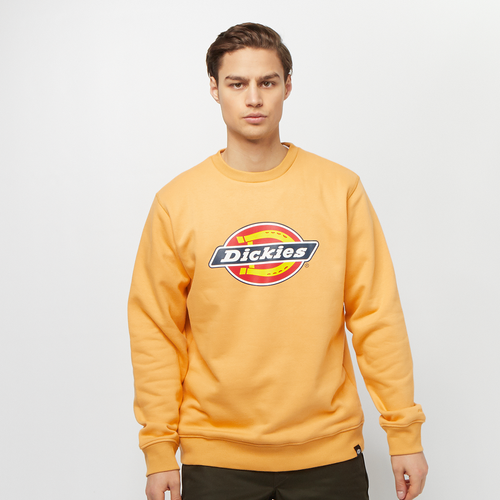 Pittsburgh Regular Sweatshirt - Dickies - Modalova