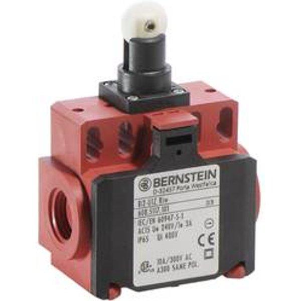 Bernstein AG BI2-U1Z RIW Endschalter 240 V/AC 10A Rollenhebel tastend IP65 1St
