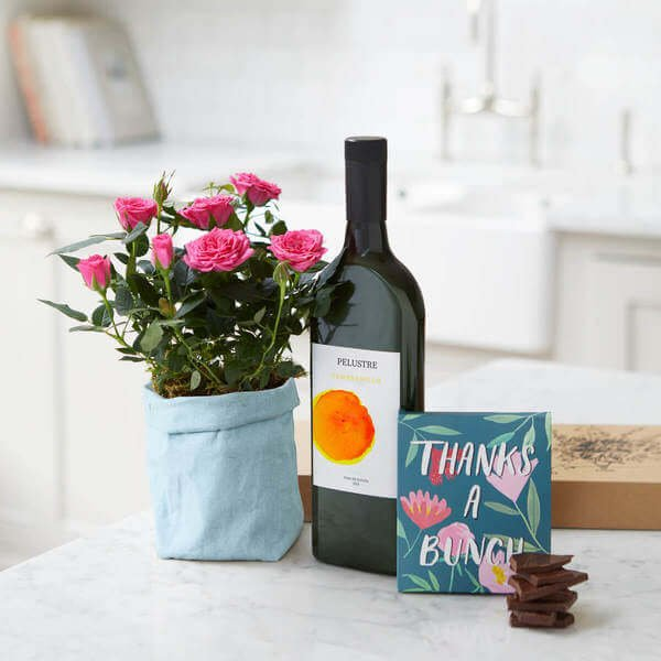 The Celebration Hamper - Letterbox Gift - Rose Plant - Plants - Next Day Delivery - The Thank You Hamper