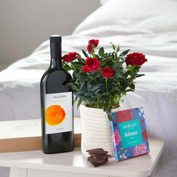 The Celebration Hamper - Letterbox Gift - Rose Plant - Plants - Next Day Delivery - Red Roses - The Romantic Hamper