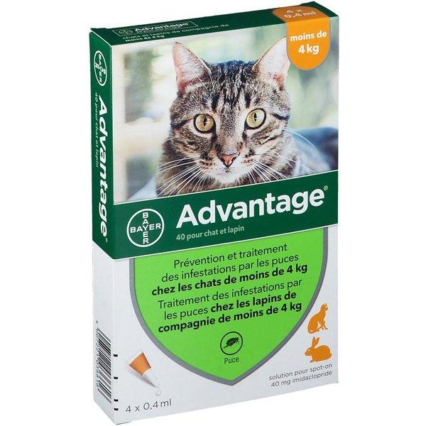 Bayer Advantage 40 für Katzen und Kaninchen bis 4kg 4 Pipetten
