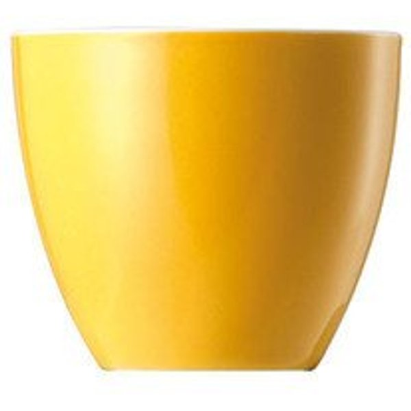 Thomas 'Sunny Day Yellow' Egg Cup
