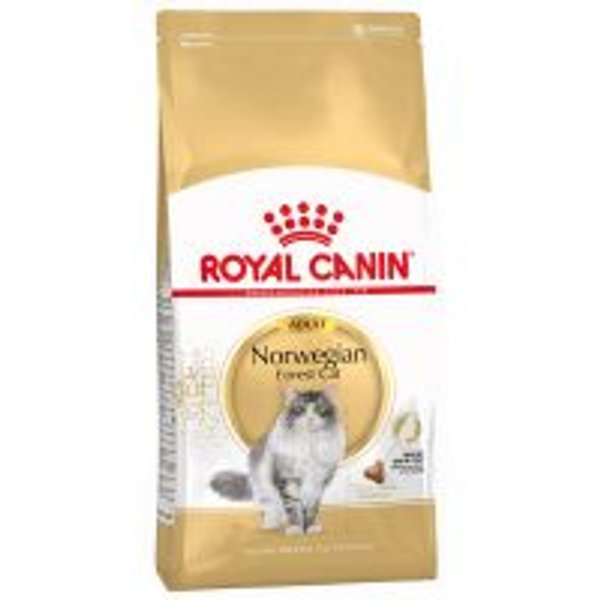 Royal Canin Norwegian Forest Cat, pieces x 10kg