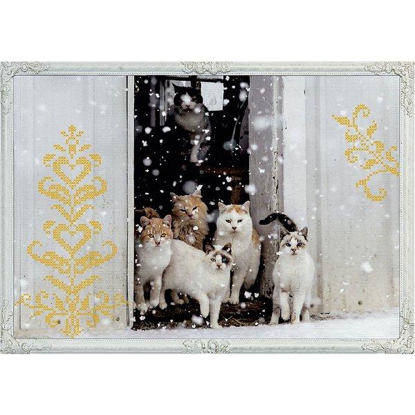 COPPENRAT Adventskalender 42x29,7cm 92523 Katzen Winterträume
