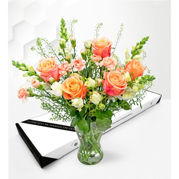 Blush Roses – Letterbox Flower Delivery – Letterbox Flowers – Letterbox Roses - Letterbox Flowers UK