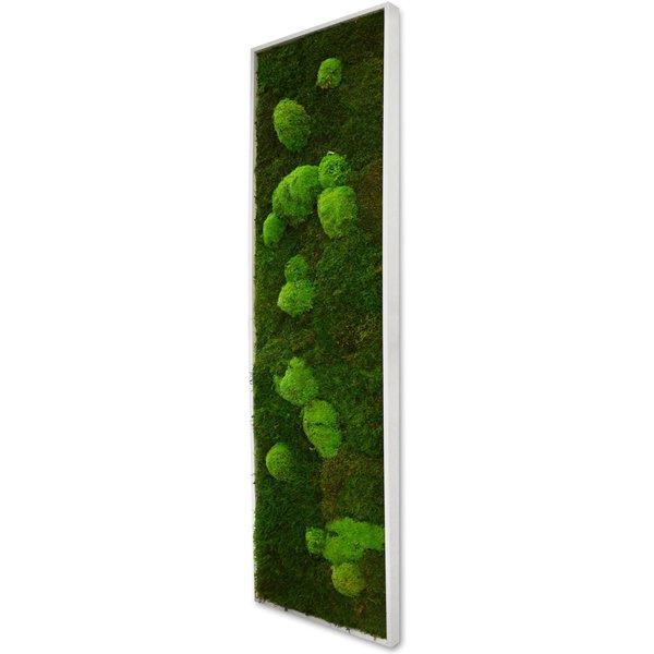 Flowerbox - Panneau végétal mousse XL avec plantes stabilisées