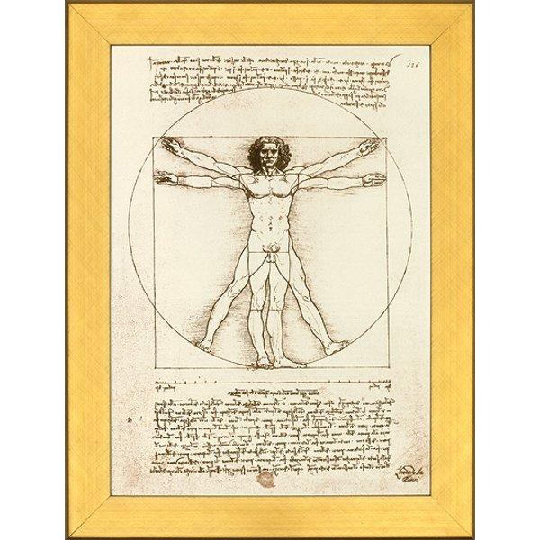 Leonardo da Vinci: Bild 'Proportionsschema der menschlichen Gestalt nach Vitruv', gerahmt