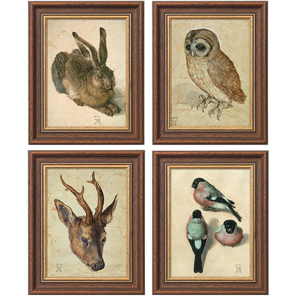 Albrecht Dürer: Vier Tierbilder im Set
