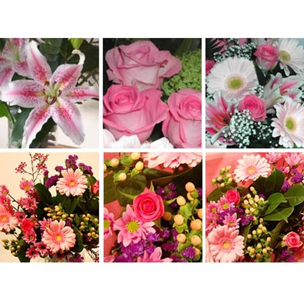 Pink Flower Collection