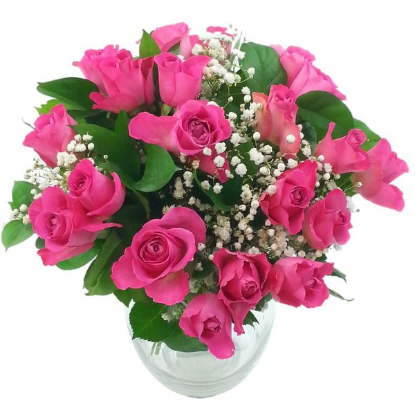 20 Pink Roses with Gyp