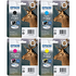Epson T1301/2/3/4 Original Extra High Capacity Black & Colour Ink Cartridge 4 Pack