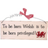 To Be Born Welsh Hanging Sign