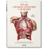 Atlas of human anatomy and surgery. Ediz. multilingue - Jean-Baptiste Bourgery;Nicolas H. Jacob