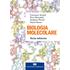 Biologia molecolare. Con Contenuto digitale (fornito elettronicamente) - Francesco Amaldi;Piero Benedetti;Graziano Pesole