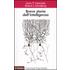 Breve storia dell'intelligenza - Anna T. Cianciolo;Robert J. Sternberg